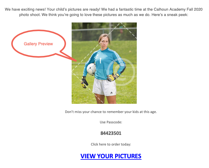 Email_galery preview